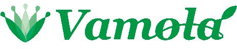 株式会社Vamola